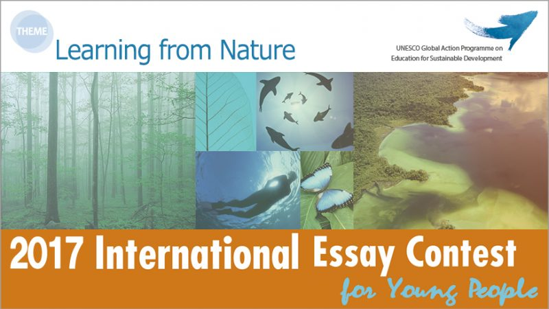 nature essay contest Environmental essay contest ddoe the value of nature in recent decades, scientific advances as well as growing environmental problems such as global warming are helping us to understand the.