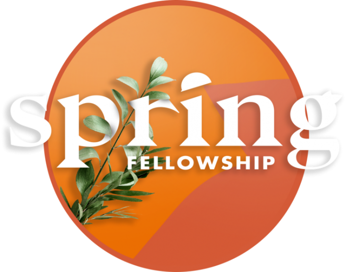 Spring Fellowship Innovation Challenge